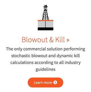 Blowout & Kill simulator